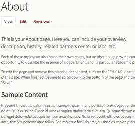 Screenshot of About page