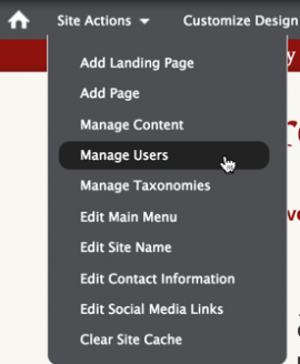 Screenshot of Site Actions Menu with Active link on Manage Users